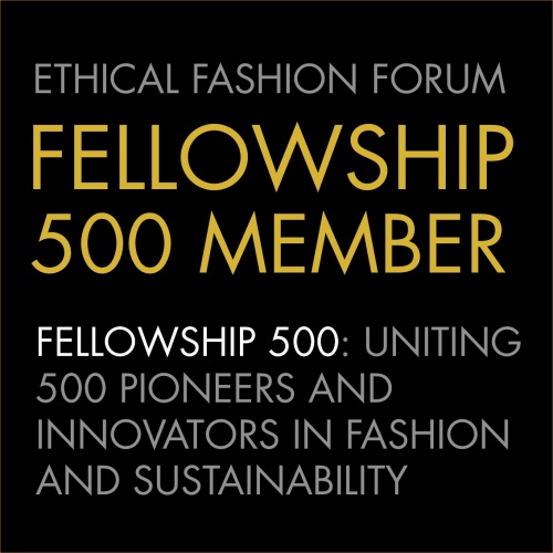 FELLOWSHIP 500 LOGO